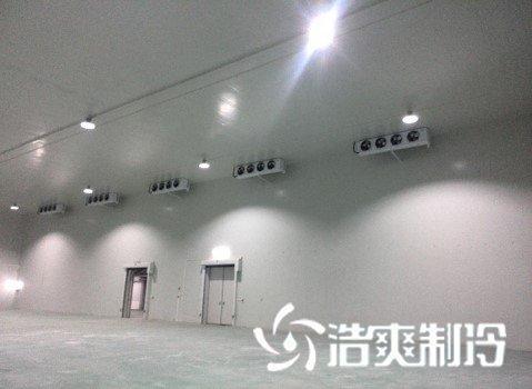 大型钢结构水果冷库安装施工完工
