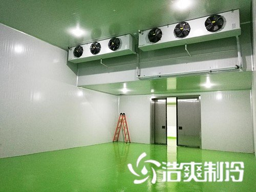 湖北龙王恨渔具集团冷库工程完工
