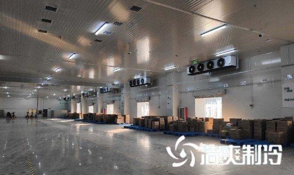 170000m³生鲜电商冷库叮咚买菜冷链配送前置仓冷库项目