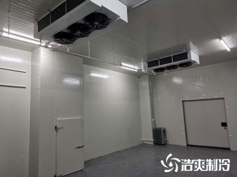 南京神州英诺华医药冷藏库施工