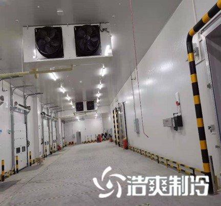 上海新兴医药血浆冷库工程建造中